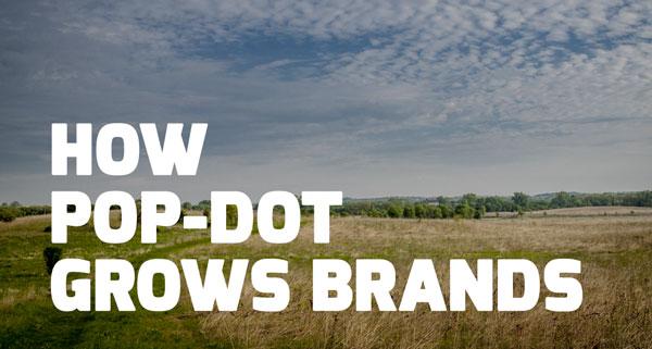 How We Grow Brands at Pop-Dot
