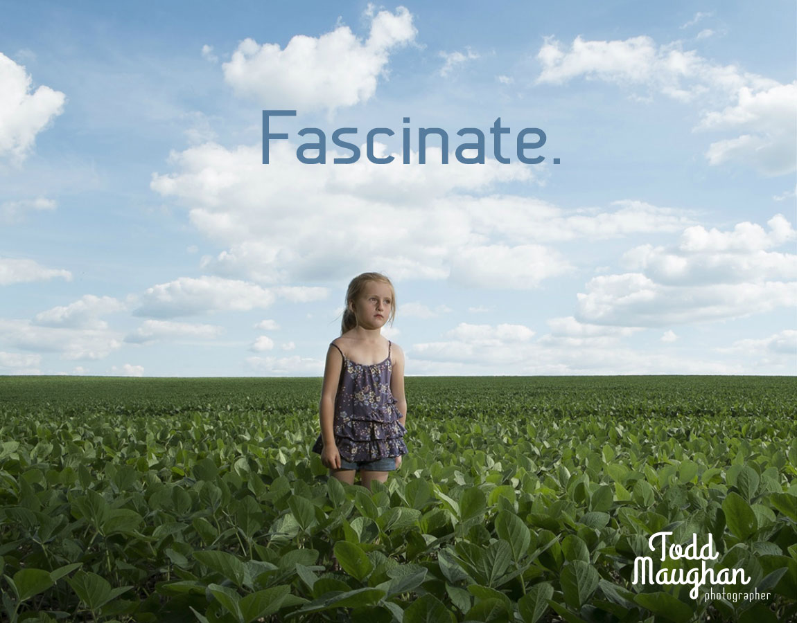 Fascinate Advertising Graphic Design Todd Maughan