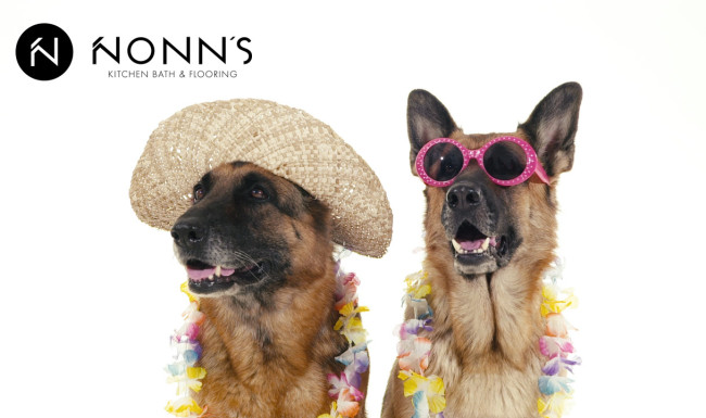 Television Advertising - Delightful Surprise: Dogs and Vacation Nonn's