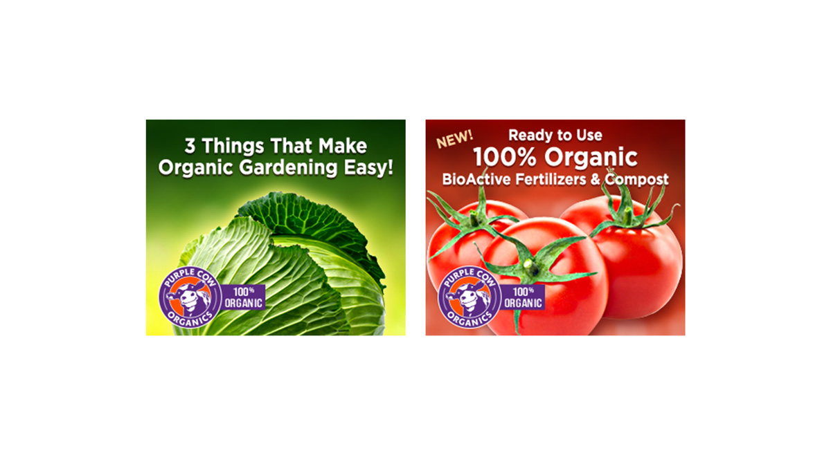 Purple Cow Organics Digital Campaign Feature Alt