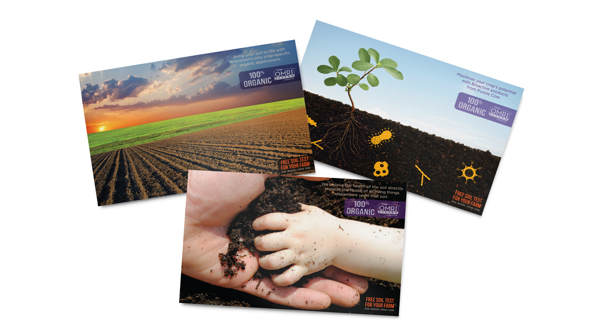 Purple Cow Organics - Direct Mailer Designs