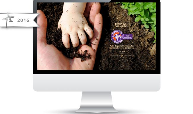 Website Design Purple Cow Organics - 2016 American Advertising Award Winner