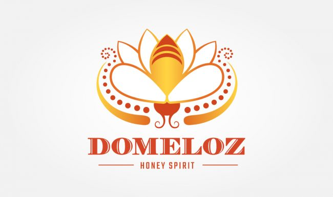 Domeloz - Logo Design by Pop-Dot Marketing
