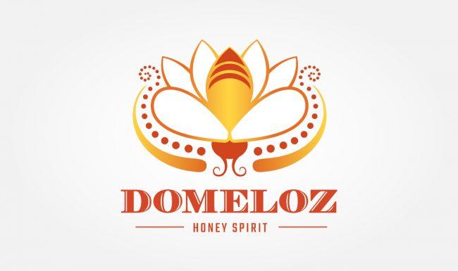 Domeloz - Logo Design by Pop-Dot Marketing