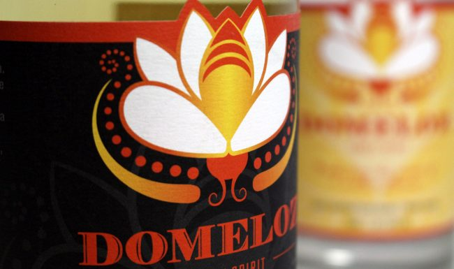 Domeloz Packaging Designs