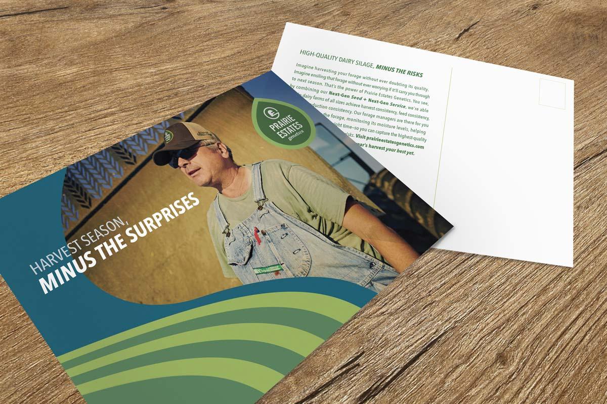 Prairie Estates Genetics - Direct Mailer Graphic Design